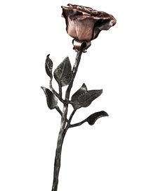 Wrought Rose