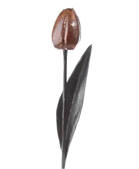 Geschmiedete Tulpe