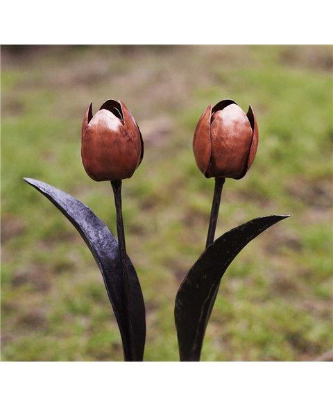 Kovaný tulipán